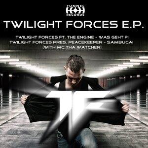 Twilight Forces 歌手頭像