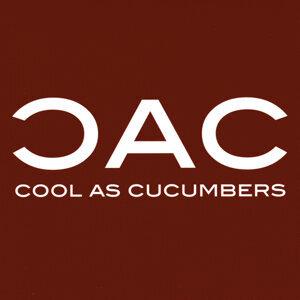 CAC Foto artis