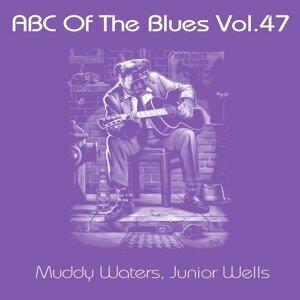 Muddy Waters, Junior Wells Foto artis