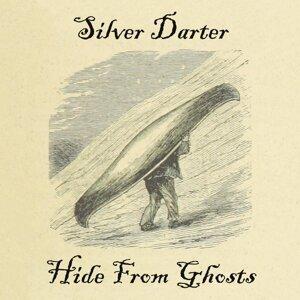 Silver Darter Foto artis