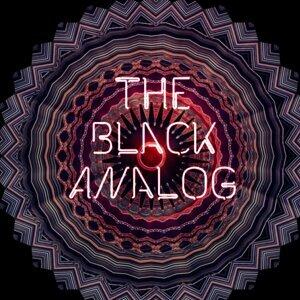 The Black Analog Foto artis