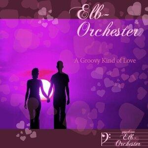 Elb-Orchester Foto artis