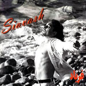Siavash Tehrani 歌手頭像