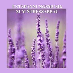 Stressbewältigung Musik Meister Foto artis