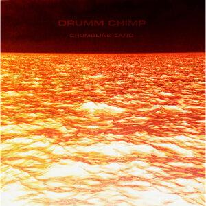 Drumm Chimp Foto artis