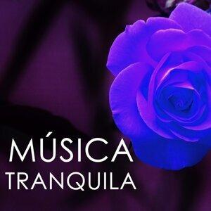 Musica Tranquila Maestro Foto artis
