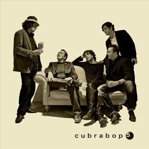 Cubrabop 5 Foto artis