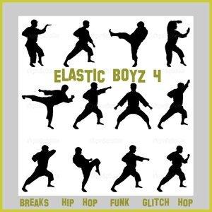 Altered Beats, The Analogeeks, Tonic, Spankbass, Electro Funk Machine, Gecko Infinite, Mr Phormula, Funkie Smoker, Ixindamix, 4Q, Kartel Pacifico, Sunka, Funkylover, Below Bangkok, Modfunk, Jules Levine, Sashaslay, 2phast, Comandbass, LMO Project, MrPacka Foto artis