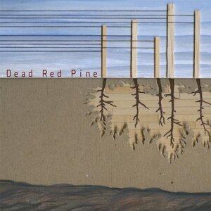 Dead Red Pine Foto artis