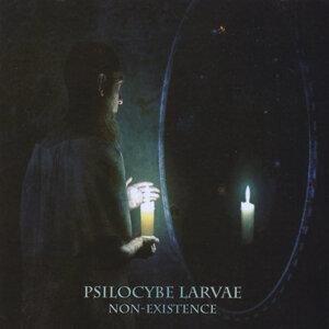 Psilocybe Larvae Foto artis