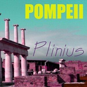 Plinius Foto artis