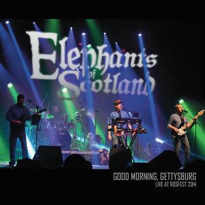 Elephants of Scotland Foto artis