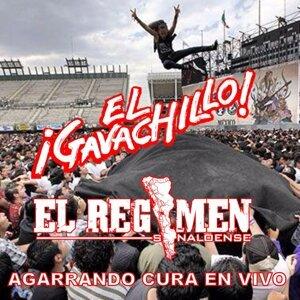 El Gavachillo, El Regimen Sinaloense Foto artis