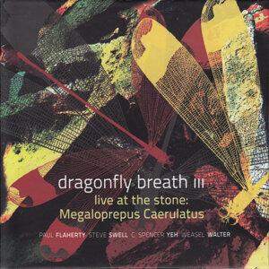 Dragonfly Breath III Foto artis