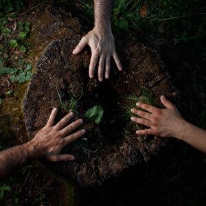 Mumble Trio Foto artis