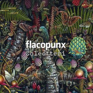 Flacopunx Foto artis