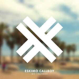 Eskimo Callboy 歌手頭像