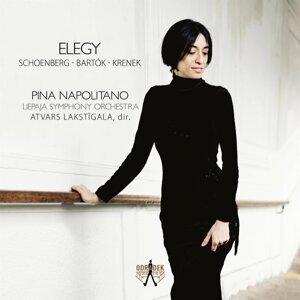 Pina Napolitano, Liepaja Symphony Orchestra & Atvars Lakstigala Foto artis