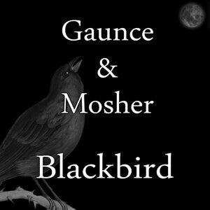Gaunce & Mosher Foto artis