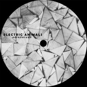 Electric Animals Foto artis