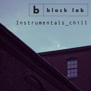 Black Lab 歌手頭像