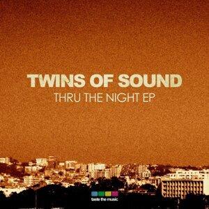 Twins of Sound Foto artis