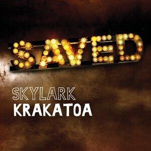 Skylarks 歌手頭像