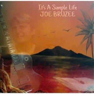 Joe Bruzee Foto artis