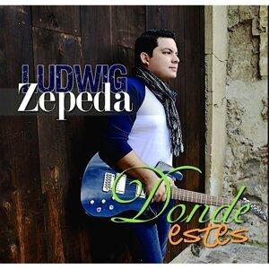 Ludwig Zepeda Foto artis