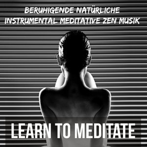 Native American Meditations & Calm Music for Studying & Zen Spa Music Relaxation Gamma Foto artis