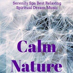 Meditation Spa & Nature Sounds Nature Music & Spiritual Health Music Academy Foto artis