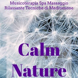 Nature Sounds & Relaxation and Meditation & Healing Massage Music Masters Foto artis