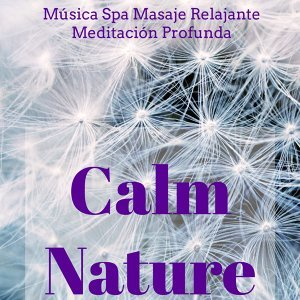 Studying Music & Best Relaxing SPA Music & New Age Healing Foto artis