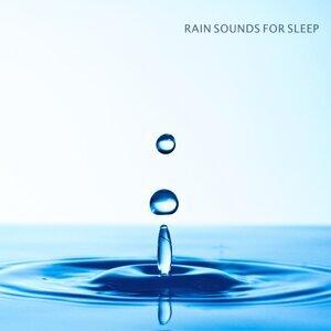 Rain Sounds, Nature Sounds & Nature Sounds Nature Music Foto artis