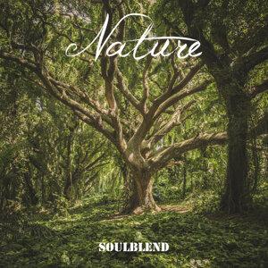 SoulBlend Foto artis