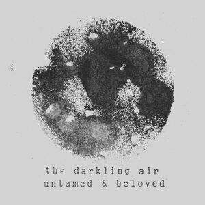 The Darkling Air Foto artis