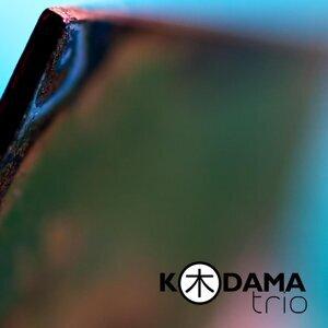 Kodama Trio Foto artis