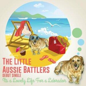 The Little Aussie Battlers Foto artis