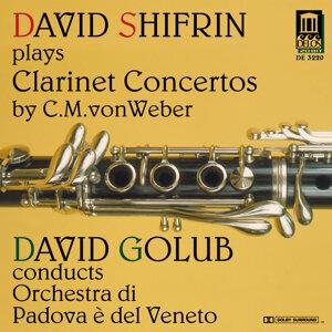 Orchestra di Padova e del Veneto Foto artis