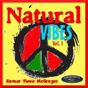 Natural Vibes Vol 1 Foto artis