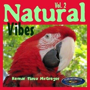 Natural Vibes Vol 2 Foto artis