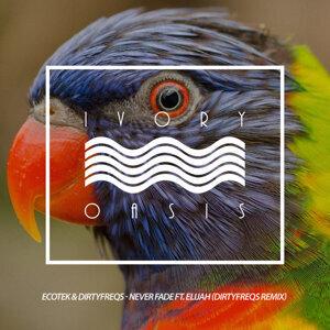 Ecotek, Dirtyfreqs Foto artis
