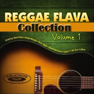 Reggae Flava Collection Foto artis