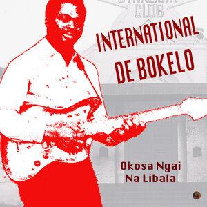 International De Bokelo Foto artis