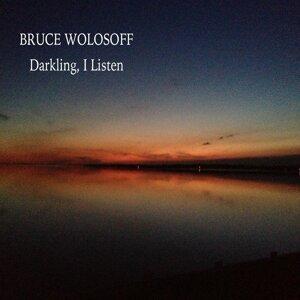 Bruce Wolosoff Foto artis