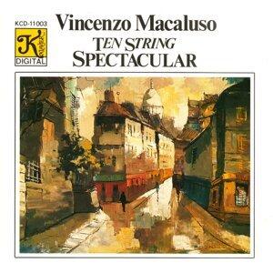 Vincenzo Macaluso Foto artis