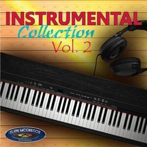 Instrumental Collection Vol. 2 Foto artis