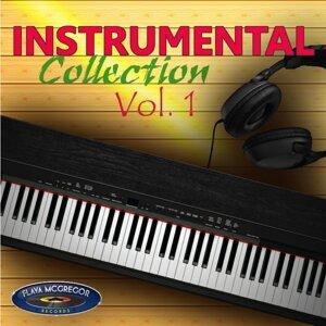 Instrumental Collection Vol. 1 Foto artis