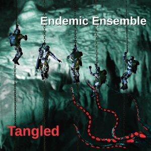Endemic Ensemble Foto artis