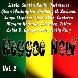 Reggae Now Vol. 2 Foto artis